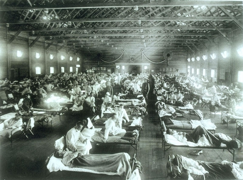 """RHS Lecture: Prof. David Arnold, """"Death & the Modern Empire: the 1918-19 Influenza Epidemic in India"""""""