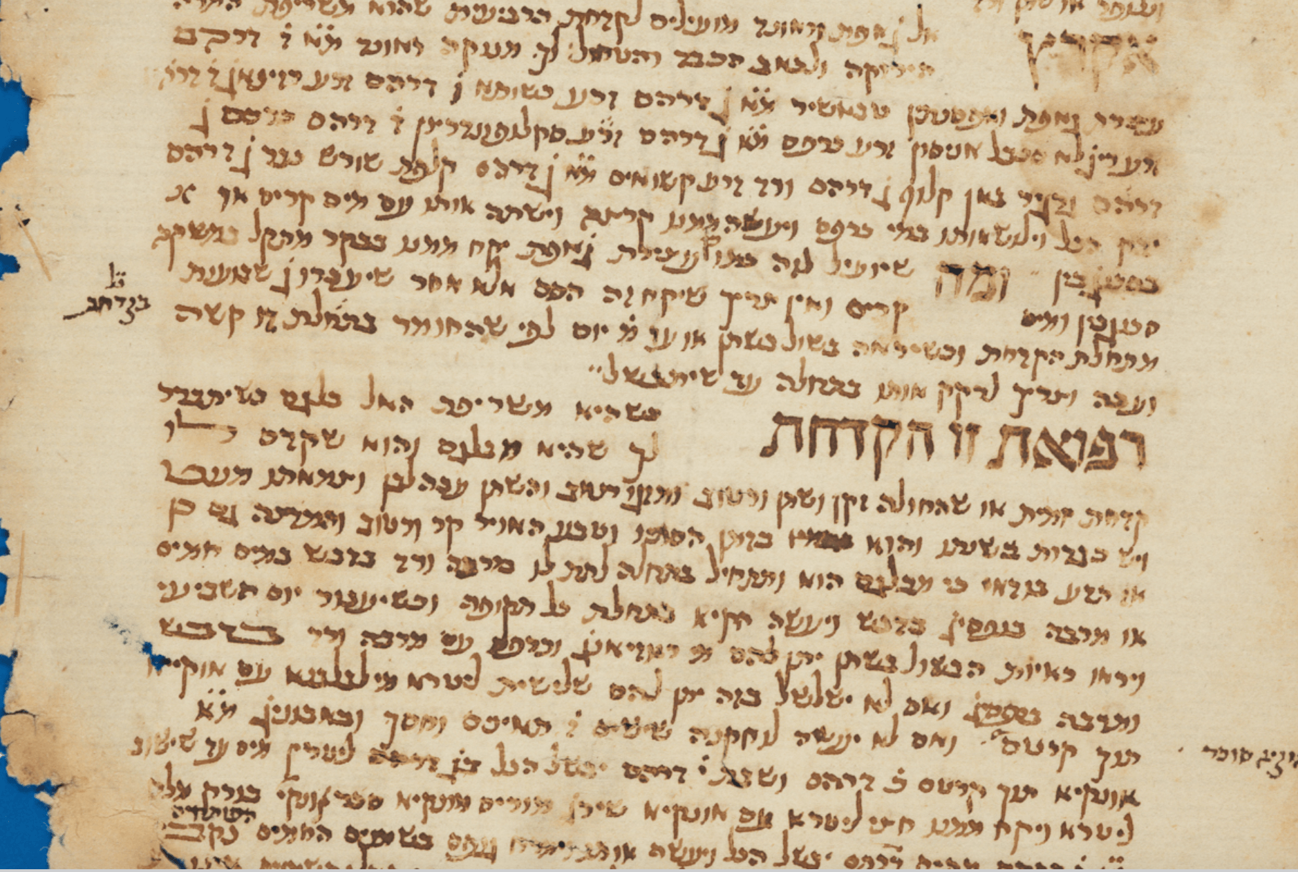 The contribution of the Cairo Genizah to the study of medieval Arabic medicine